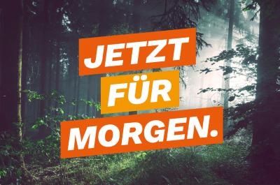 JETZT FÜR MORGEN - der Grün-Schwarze Koalitionsvertrag 2021 - 2026